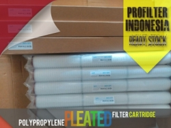 Pleated Cartridge Filter Bag Indonesia  large