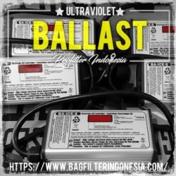 d d Viqua Ultraviolet Ballast Indonesia  large